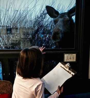 Student Viewing Moose Outside the Window